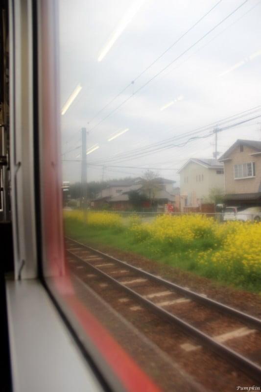 往阿蘇沿途風景