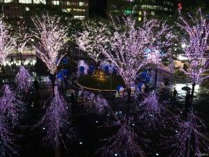 博多City夜景