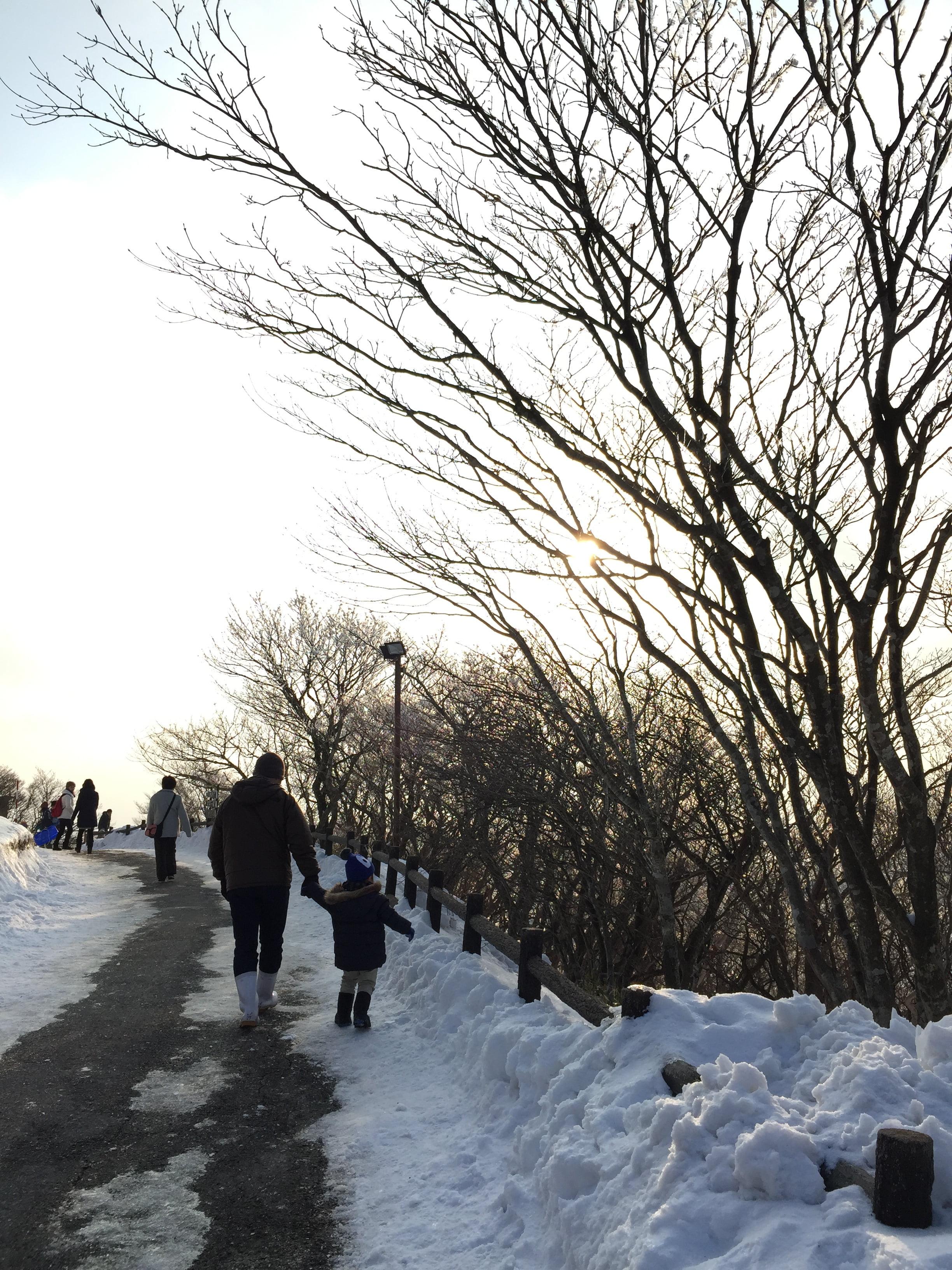 御在所山上的雪景