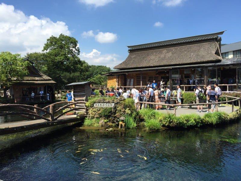 忍野八海 - 鏡池
