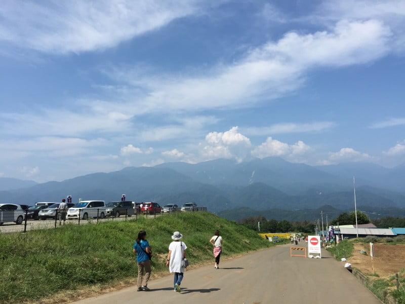 明野向日葵花田旁的小路