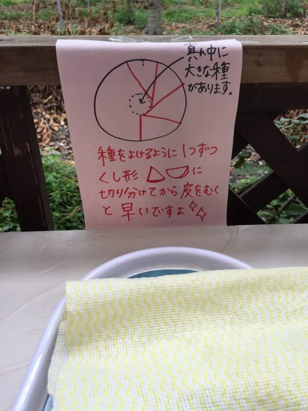 くぬぎ観光農園的圖示切桃方法
