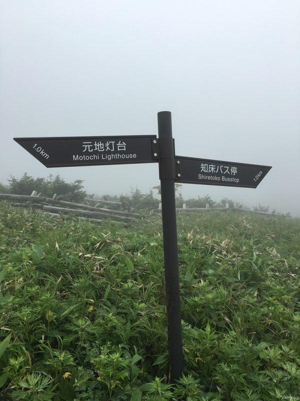 桃岩步道指示牌 - 看到後,繼續走