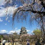 日本四大國寶城 - 松本城
