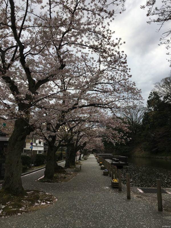 金沢城山公園