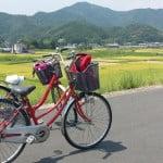 四國四萬十川單車遊