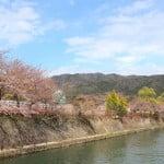 京都必到景點 - 平安神宮外的護河