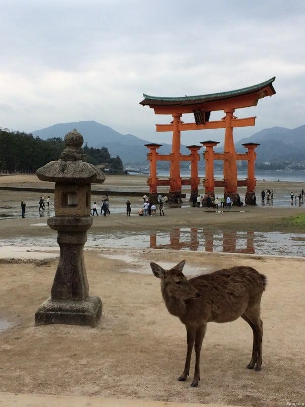 日本宮島三景