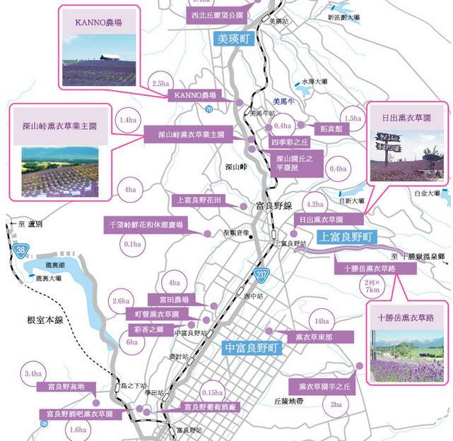 北海道富良野花田分佈地圖