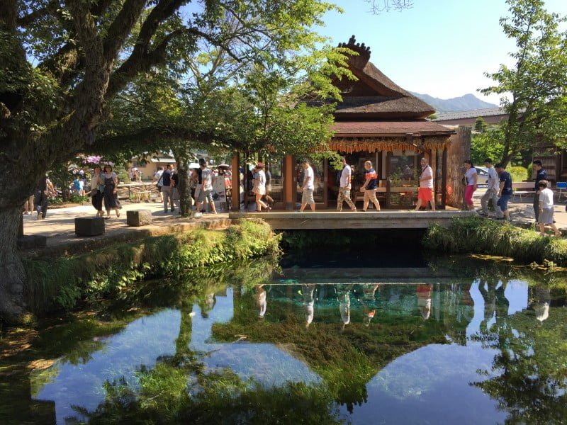 忍野八海 - 湧池