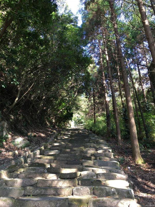 可往鵜戶神宮的八丁坂參道