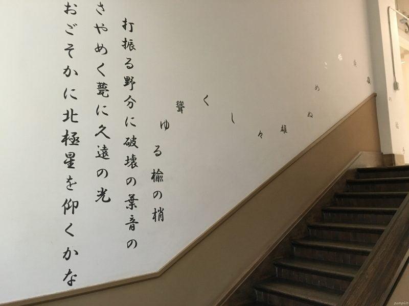 北海道大學博物館